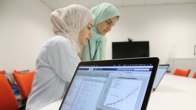 First-year students using MATLAB for mathematical modeling.