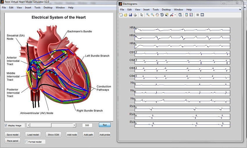 thesis modelling simulation