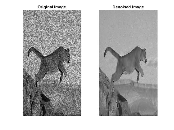 Original (left) and denoised (right) images. The image was denoised while preserving the edges using a  wavelet denoising function.