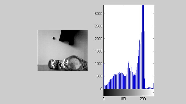Image Processing Toolbox와 함께 사용되어 실시간 히스토그램이 포함된 비디오 피드를 표시하는 데 사용되는 Acquisition Toolbox.