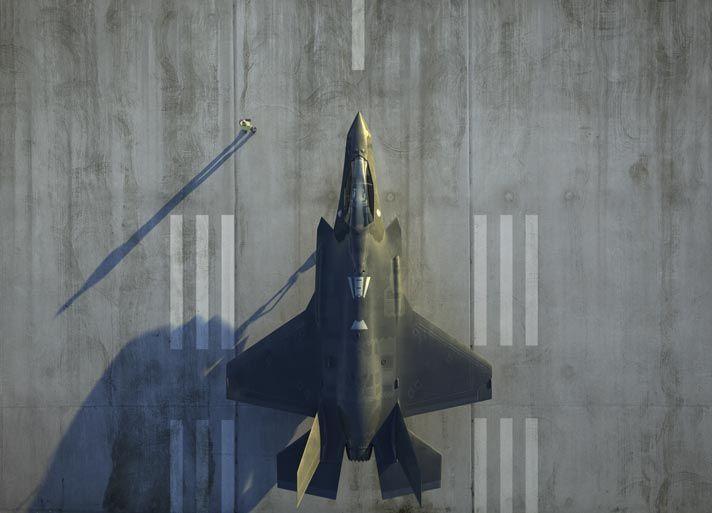 비행 제어 및 엔진 제어