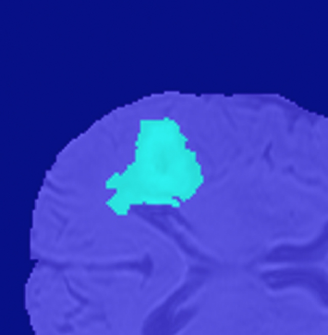 3D 데이터